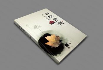 自然奇观中国风书籍封面设计